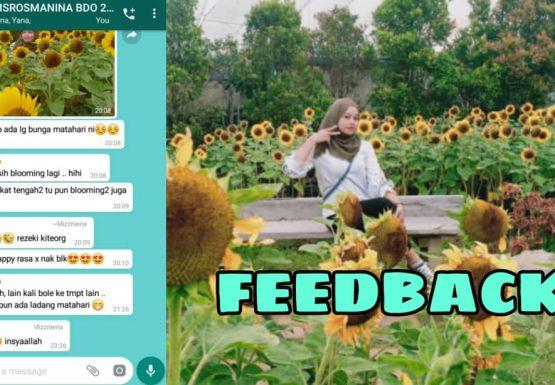 feedback_bandung